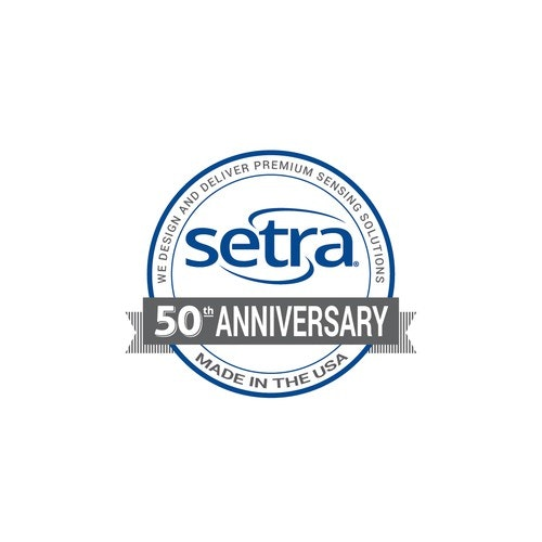 Anniversary logo with the title 'Anniversary Logo'