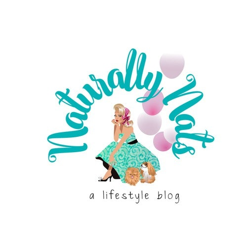 Style logo with the title 'Life Style Personal Blog'