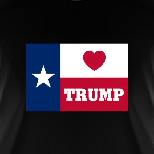 Texas t-shirt with the title 'Political T-Shirt'