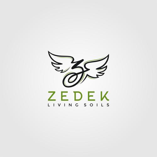 Z logo with the title 'Z Logo'