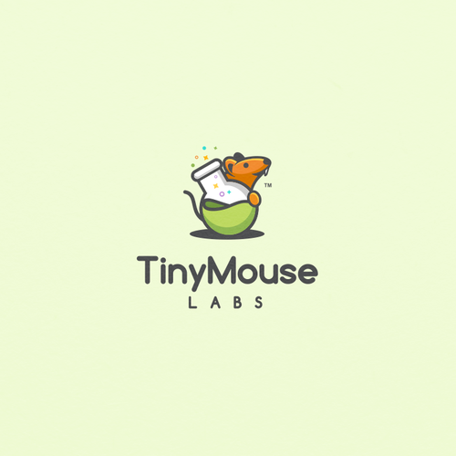 Internet logo with the title 'Fun Logo concept for TinyMouse Labs'