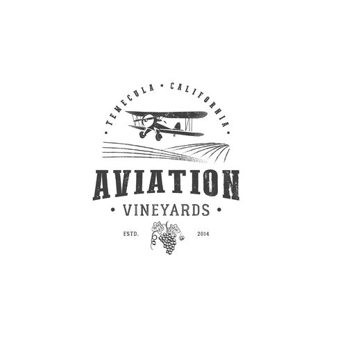 Aviation logo with the title 'Logo for wine company'