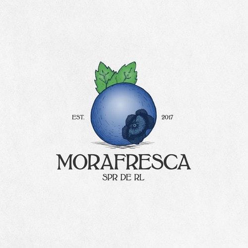 Grape logo with the title 'Blueberry retro logo for berry farm'